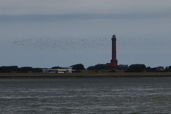 20140804-Norderney